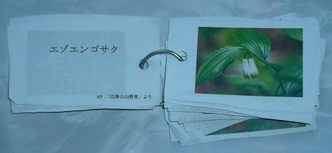 DSCF4088z.jpg