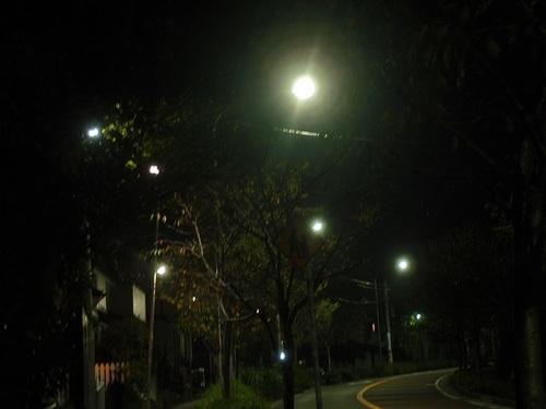 PA100434z.jpg
